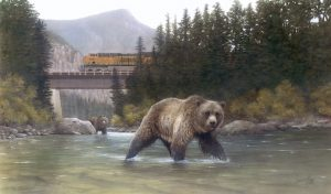 Business as Usual- two grizzly bears search stream while BNSF 6691 crosses above them 19 x 28 Limited Edition giclee print or 16 x 24 open edition print